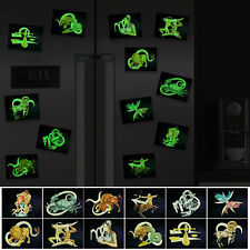 Glow in the Dark Horoscope Fridge Magnet Zodiac Sign 12 Models  3.14 x 2.36 inch