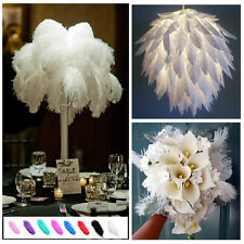 2015 Wholesale 6-26inch 10/20/50pcs Natural Ostrich Feathers Wedding Party Decor