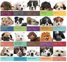 Dog Breed Dog Expert Books