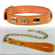 STAFFORDSHIRE SMALL COLLAR WITH DOG FACE & CHAIN LEAD BRASS FITTED IN 7 COLORS