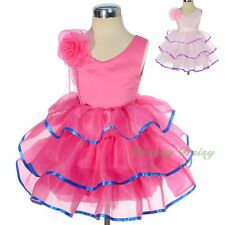 Rose Organza Coloured Ribbon Band Wedding Girl Flower Party Dress Size 0-4 FG295