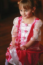 TODDLER GIRLS KIDS DELUXE PINK FAIRY PRINCESS SLEEPING BEAUTY COSTUME DRESS 2-8