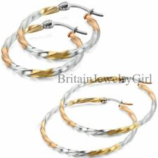 Womens Silver Gold Tone Stainless Steel Twisted Circle Hoop Dangle Earrings 2PCS