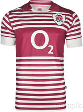 Canterbury CCC England Rugby Alt Pro 2013-14 Striped Jersey