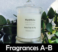 Scented Soy Wax Candle (Scents A-E) 100% Soy Wax - 45hr Burn Time - Danube Jar
