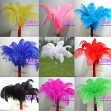 Wholesale 100pcs High Quality  OSTRICH FEATHERS 10-12'inch/25-30cm