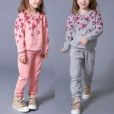 2PC Baby Girl Kid Clothes Toddler Floral Top Sweatshirt + Pant Suit Outfit Set