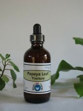 Papaya Leaf Tincture Extract Organic Carica papaya Herbal Remedy Ecstatic Earth