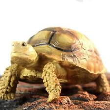 Resin lifelike Turtle Simulated Tortoise Reptile Sculpted Statue Garden Decor