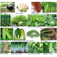Heirloom Garden vegetable seed Delicious Vege seeds bank survival organic plant