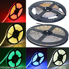 12V 5M SMD 2835 Waterproof LED Strip String RGB+White 5050 Lights Flexible Lamp