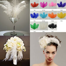 US 10pcs Wedding birthday party Natural ostrich feathers 6-8inch/15-20cm Bulk