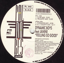 "Dynamic Boys Feat Janine-Feeling So Good 12""-PALMARES, PL 340, 1992, Company Sle"