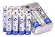 16x AA 3000mAh 1.2V Ni-MH rechargeable battery BTY for MP3 RC Toy Camera+Charger