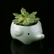 Mini Animal Planters Kawaii Little Animal Ceramic Flower Pot for Garden Home