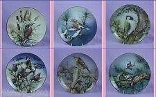 Hamilton Collection Colourful Bird of Britain's Heritage Collectors Plate