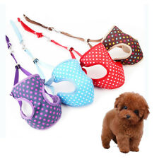 Cute Breathable Pet Safety Walking Vest Matching Lead Leash Set Dog Harness