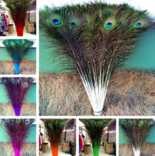 Choose perfect 20-100 PCS peacock feathers eye 28-32 inches / 75-80 cm