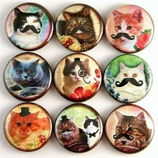 cat kitty funny humor vtg mustache pet fridge magnet pin badge button cab charm