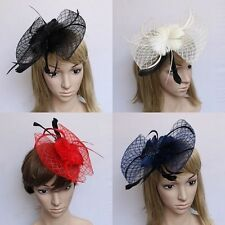 Feather Mesh Net Bowknot Hair Hat Garland Fascinator Hairclip Multi Color