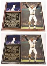 Kirk Gibson 1984 World Series Home Run Detroit Tigers Photo Plaque