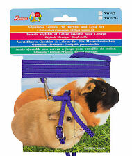 Guinea Pig Harness Set. 5 Colours  Adjustable Suitable for Lizards Rodents Pets
