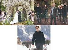 "Twilight Breaking Dawn Cast inc. Robert Pattinson 10 x 8"" Signed PP Autograph"