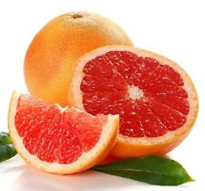 GRAPEFRUIT PINK Essential Oil *Buy 5 Get 2 FREE* 1ml 2ml 4ml 15ml 30ml