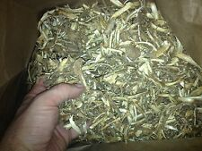 Dried Devil's Club Root Bark - Powerful & Spiritual Native American Remedy