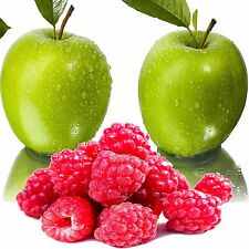 Apple Raspberry Fragrance Oil Candle/Soap Making, Oil Burners, Diffusers