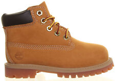 Timberland Boots Wheat Suede Children (little kids infant) 6 Inch Prem NIB 12809