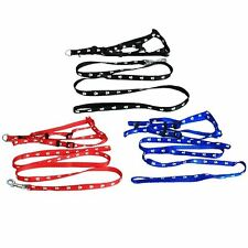 Small Dog Harness & Lead, Puppy Harness & Lead, Dog Training Harness & Lead