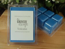 NEW SCENTS -Soy Wax Clamshell Melt Tarts- 2wks of Fragrance/Clamshell
