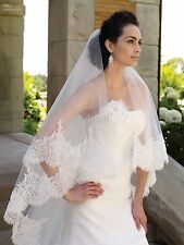 "116"" Charming Elegant Cathedral Wedding Bridal Veil Chic Lace Edge Long Train"