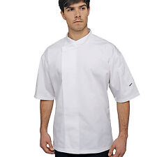 Le Chef LC005 Short Sleeve White Academy Chefs Tunic
