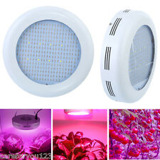 300W Full Spectrum 277-Led Plant Grow Light IR UV Flower Veg Hydroponics lamp