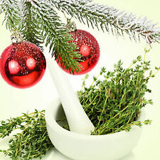 CHRISTMAS THYME Room/Linen/Car Air Freshener Spray EXTRA STRONG