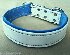 White Leather Dog Collar & Soft Blue Suede Leather Inner Lining