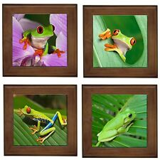 Frog Lovers Home Decorative Ceramic Framed Tile/ Wall Plaque Bench Display New