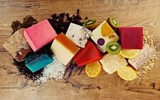 Lush Organic Soap Handcrafted Gift Natural Handmade Vegan Discontinued 2016
