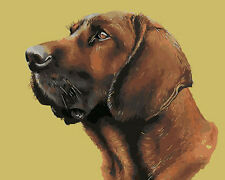 Vivid Portrait of Dog Hand painted Design Needlepoint Canvas 241