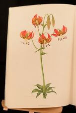 1962 WB Turrill A Supplement to Elwes Monograph on the Genus Lilium Part IX