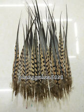 10-100pcs precious 15-20 cm / 6-8 inch natural pheasant feathers decoration