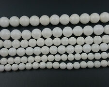 Natural Gemstone Shell Beads White Tridacna Round Loose Beads 4mm 6mm 8mm 10mm