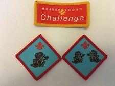 Uk Scouting Obsolete Badges - Beaver Scouts