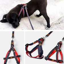 Small Large Dog Leash Adjustable Harness Pet Walk Out Hand Strap Vest Collar