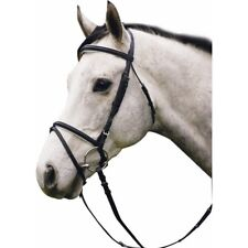 Henri de Rivel Padded Caveson and Brow Dressage Bridle with Web Reins