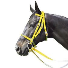 Intrepid International NEW Racing Bridle - Nylon with Rubber Reins Horse Racing