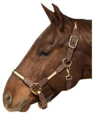 Intrepid International NEW Two Tone Tan/Brown Nylon and Leather Halter Brass