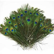 HOT Wholesale 50-1000pcs Real Natural Peacock Tail Eyes Feathers 9-12 Inches TR